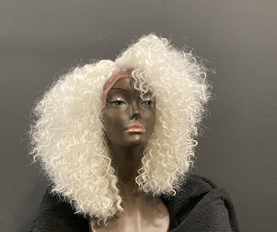Essence Wigs White Gray 'Fancy' Kinky Curly Lace Front Wig w/Parting