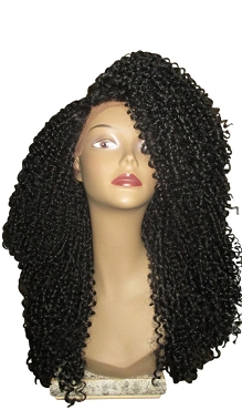 Essence Wigs The 'JANET JACKSON' BLACK Lace front wig Natural Hair Lace Wig