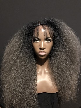 Essence Wigs Gorgeous Gray Kinky Straight Wig Lace Front